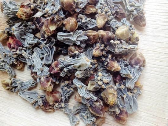 Dried cholla buds.