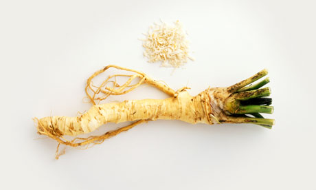 A cleaned and grated horseradish root.