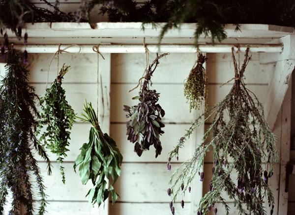 Drying herbs can be an aesthetic and aromatic addition to a room.