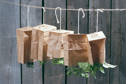 The paper bag method of drying herbs.