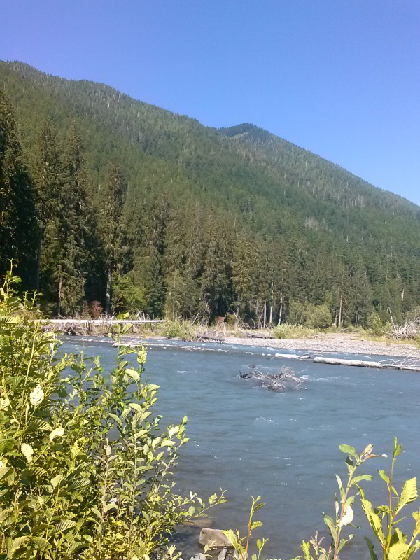 A glacial river in the Hoh Rainforest on the Olympic Peninsula.